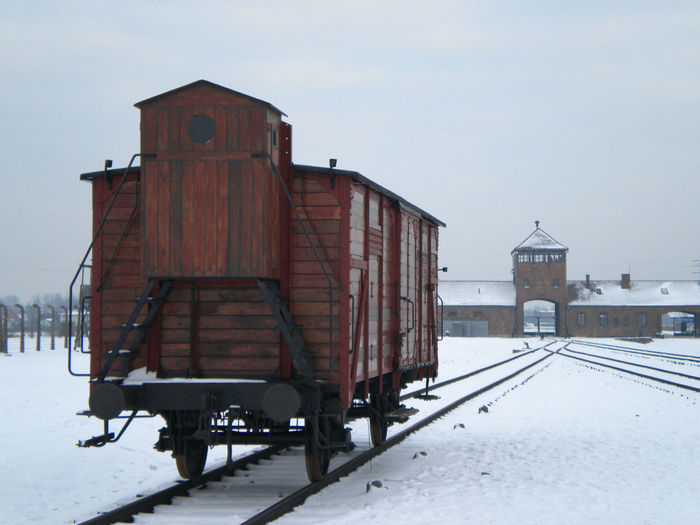 Birkenau Field Outdoors Prison Railway Snow Wagon  War Winter