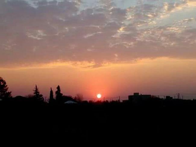 Sunset Silhouette Tree Cloud - Sky No People Scenics Sun