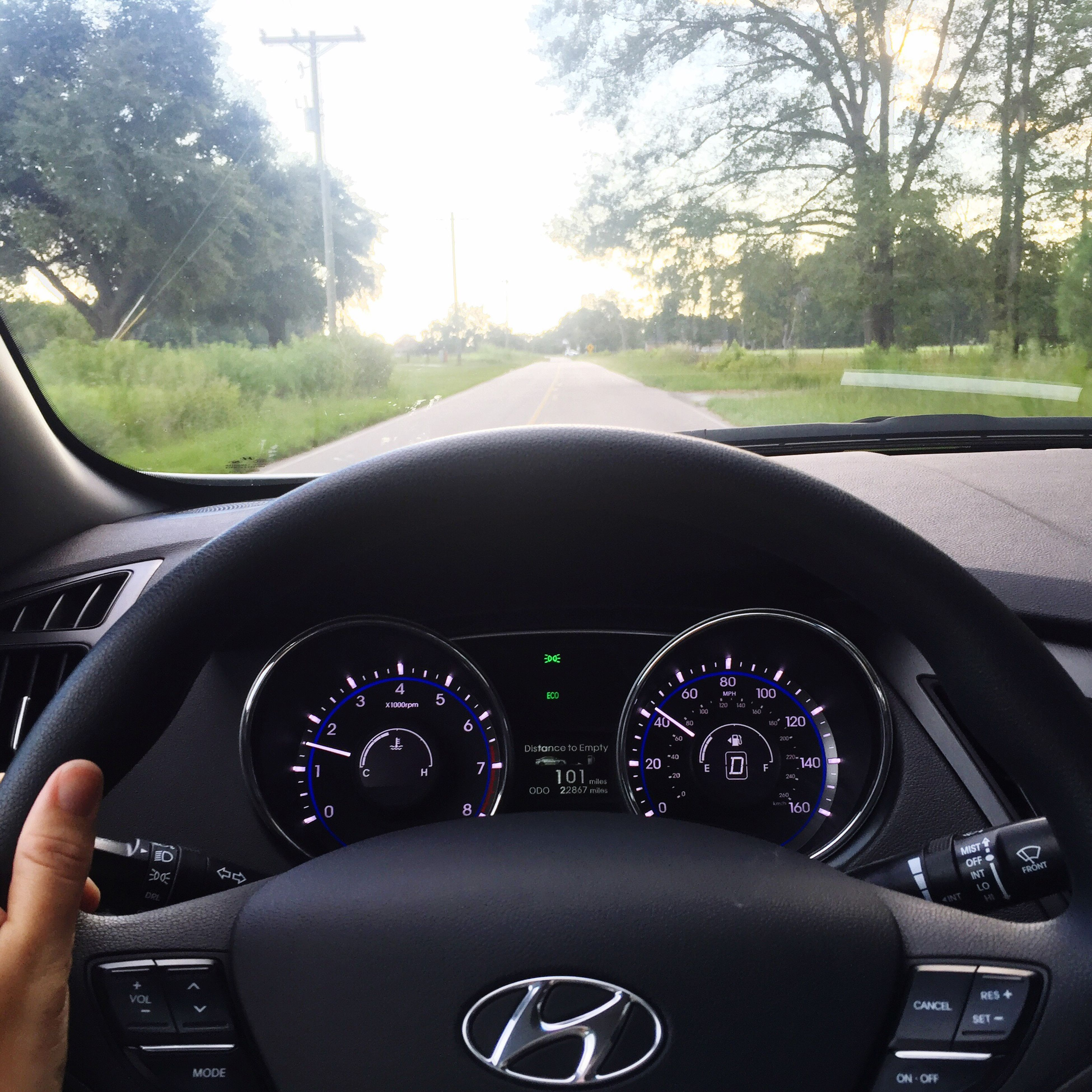 transportation, land vehicle, mode of transport, vehicle interior, car interior, part of, windshield, cropped, close-up, dashboard, side-view mirror, steering wheel, road, tree, journey, personal perspective, vehicle part, driving, day, speedometer, focus on foreground, windscreen, rear view mirror
