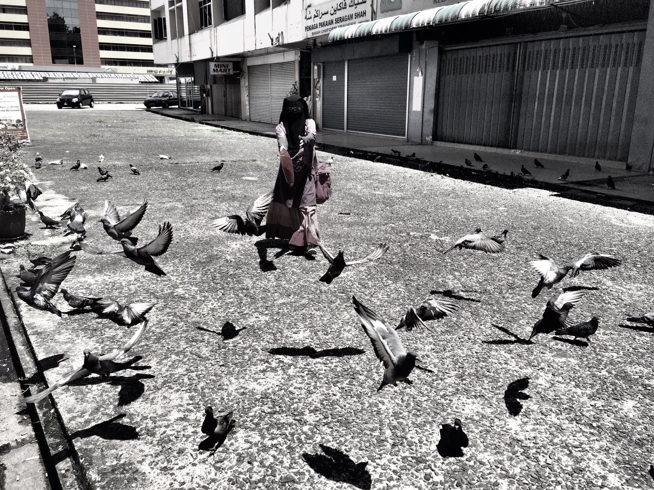 After shopping,stop by to scare the pigeon.haha... Enjoying Life Quality Time Zfrhhsdn
