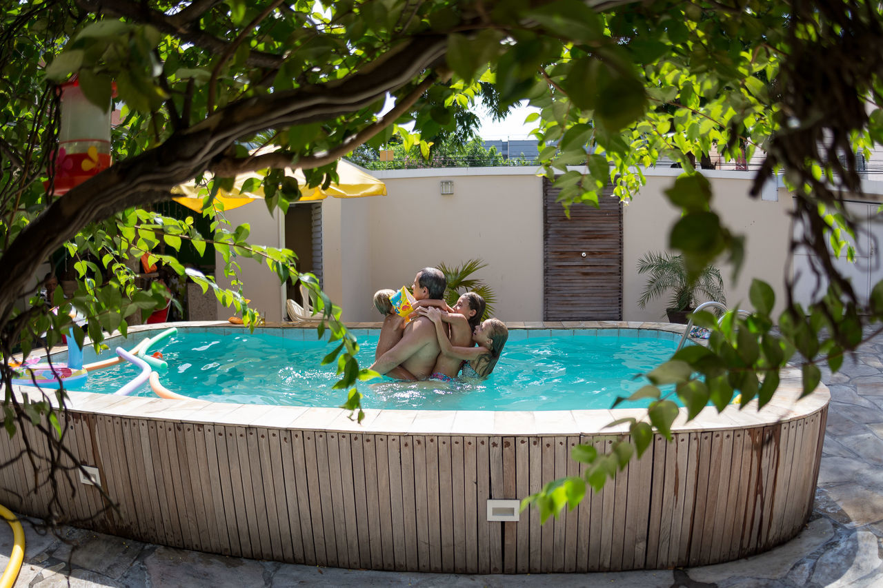 water, front or back yard, tree, outdoors, swimming pool, animal themes, no people, day, one animal, growth, nature, building exterior, tap, mammal, freshness