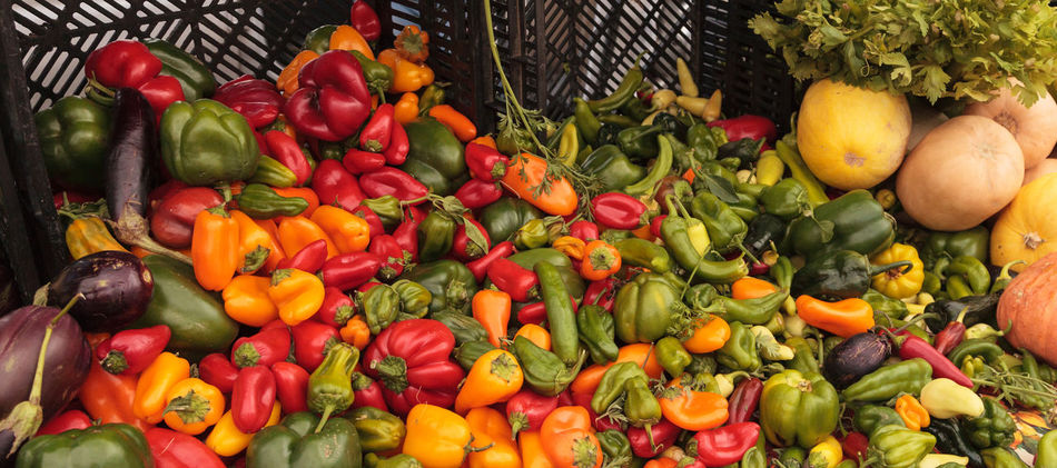 Mix of Peppers, cauliflower and eggplant grown and harvested in Southern California and displayed at a farmers market. Cauliflower Day Eggplant Food Food And Drink Freshness Green Pepper Healthy Eating Healthy Food No People Outdoors Peppers Raw Food Red Pepper Vegetable Vegetables Yellow Peppers