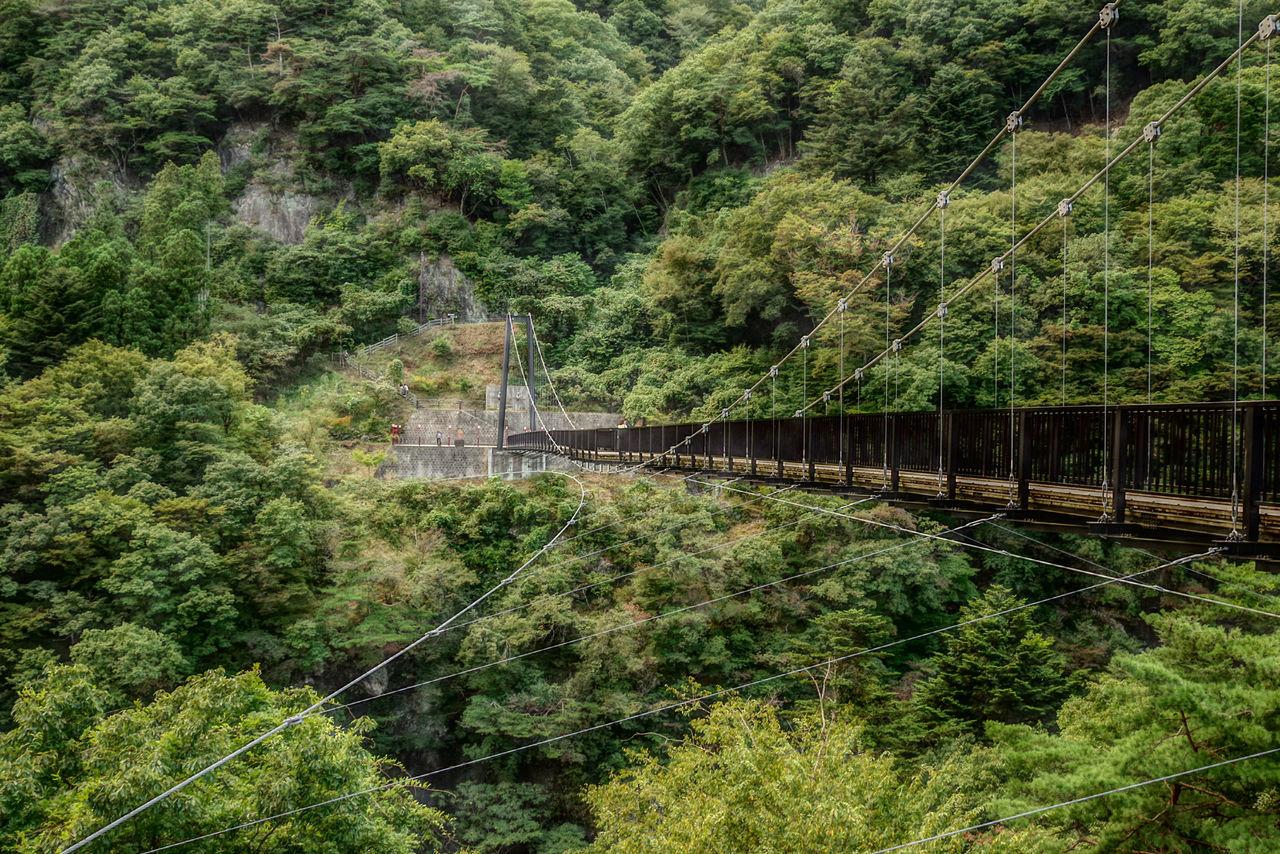 鬼怒楯岩大吊橋 。 日光 旅行で泊まるホテルの近くにありました。吊橋なのでかなり揺れますw高所恐怖症の人はかなり怖いかも。 Suspension Bridge Nice View Hdr_gallery HDR HDR Collection