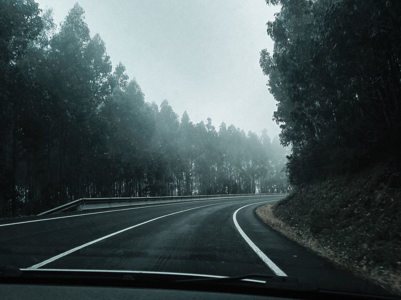 the way forward, tree, road, transportation, nature, windshield, tranquil scene, day, no people, tranquility, beauty in nature, landscape, scenics, car point of view, fog, outdoors, sky