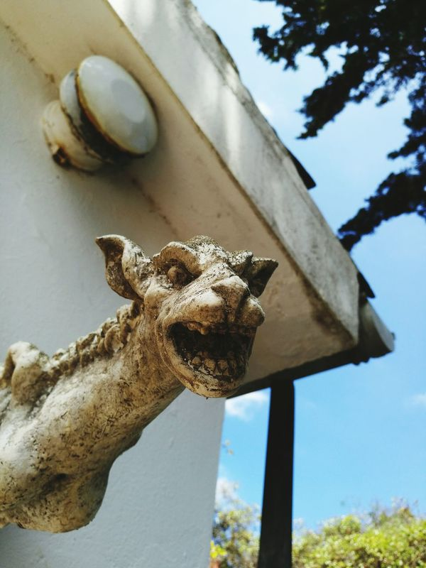 No People Day One Animal Outdoors Sculpture Built Structure Lion - Feline Går The Architect - 2017 EyeEm Awards Stone Material Architecture Statue Sky Close-up Tree Nature Gargoyle House