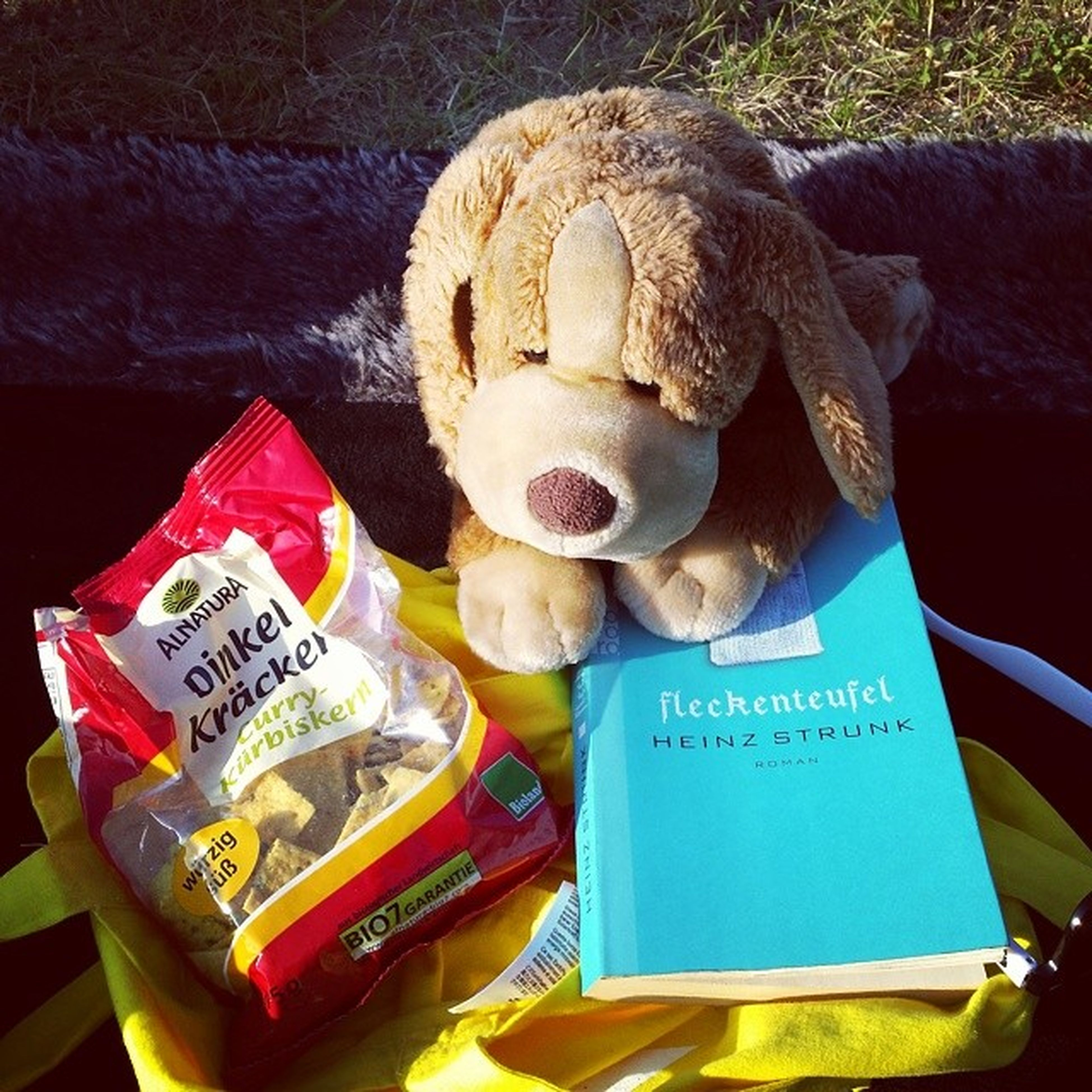 Picnic with ma, pa, Food and a good Book ! Down by the River :) puppy stuffedanimals heinzstrunk fleckenteufel teddy sun summer fun love hamburg germany deutschland elbe reading epic hipster picoftheday stuffedanimal cute instabest park swag cool chilling