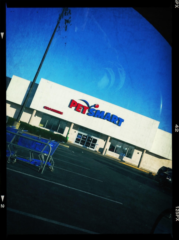 Shopping For Hirshey