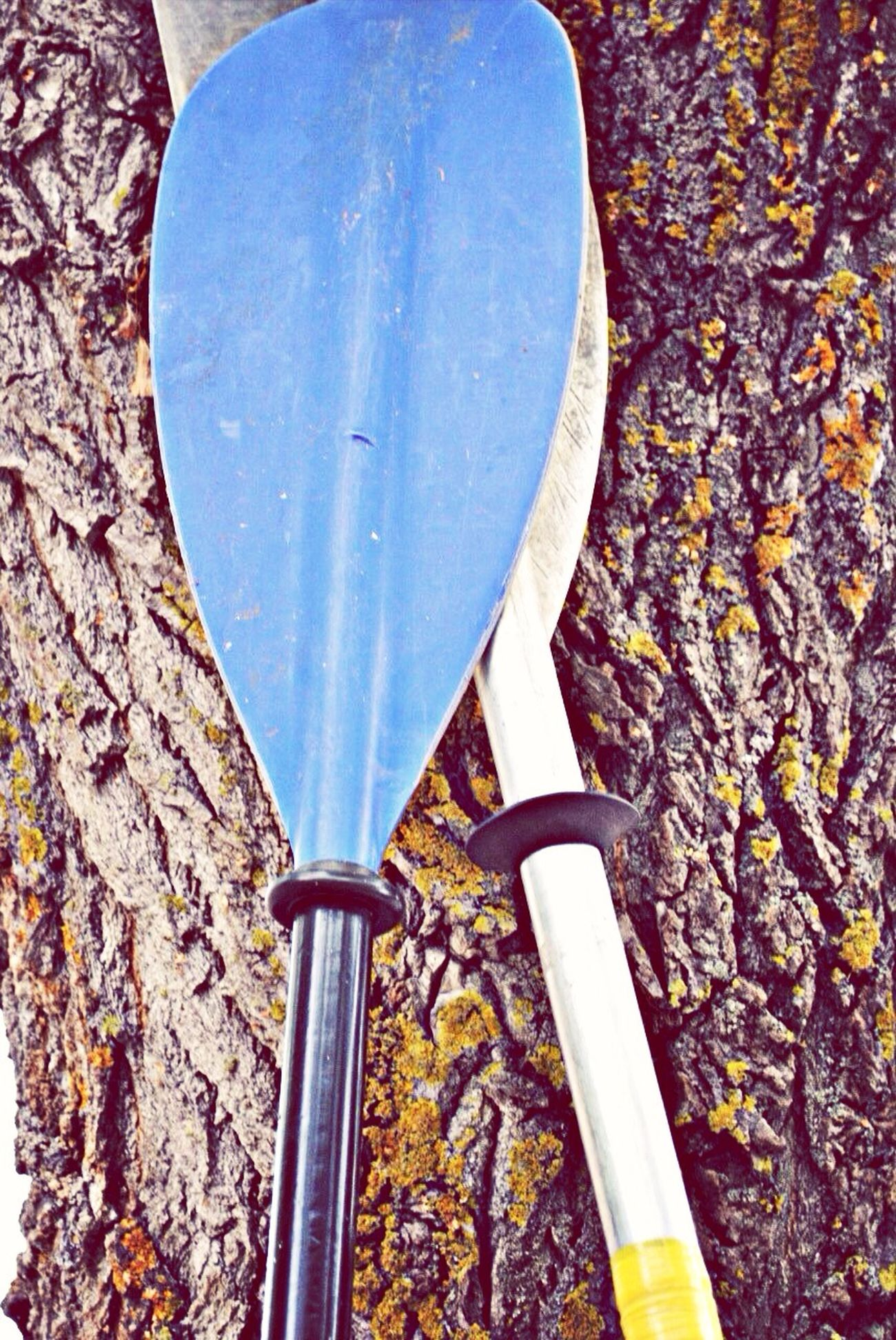 Paddles Photo Hello World First Eyeem Photo