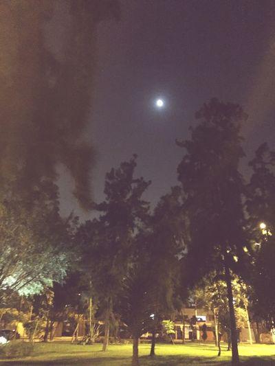 La lunaa.. Nigth 🌜⭐️ Parque