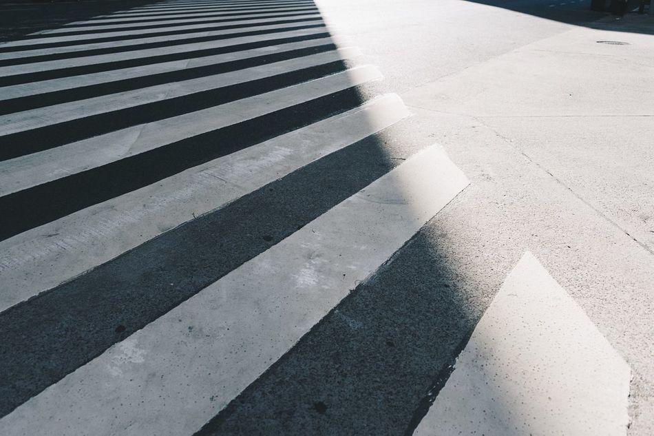 Beautiful stock photos of zebra, Argentina, Buenos Aires, Close-Up, Concrete