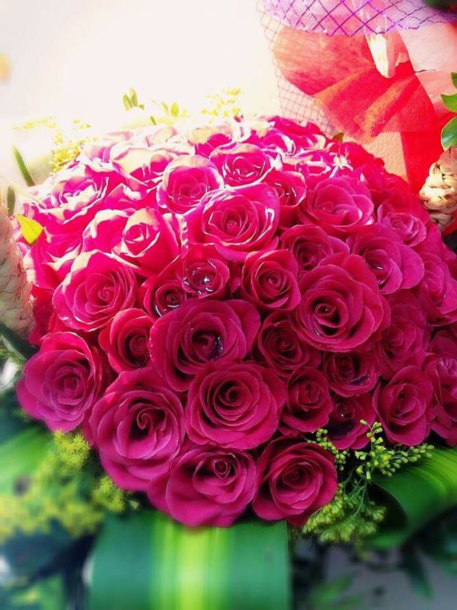 Red Roses Rose🌹 Flowers 😻😻😻 :* :*  Love ♥