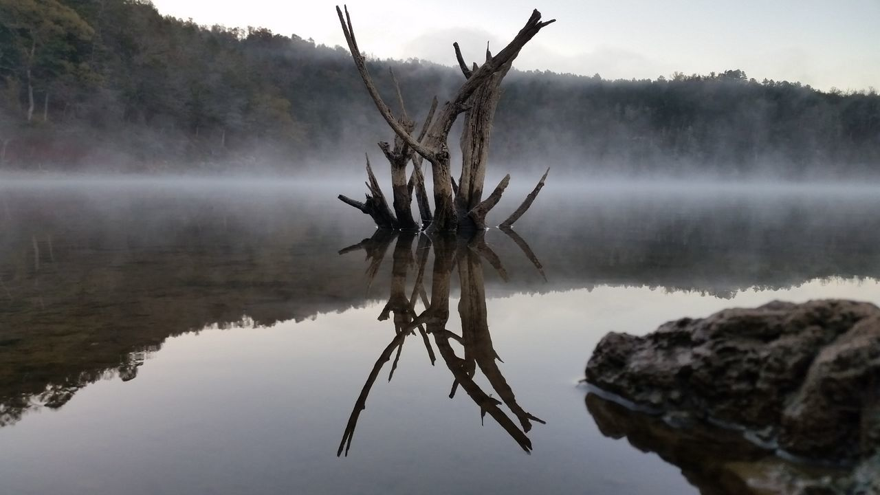 Reflection Water Nature Tranquility Reflection Lake Outdoors Beauty In Nature Lake Fishing Camping Driftwood Beach Drift Wood  Lake Nature_collection Arkansas Beautiful Arkansas, USA Arkansas_ozarks Arkansas Sunrise Fishing Lakeview Outdoor Pictures Good Morning Scenics