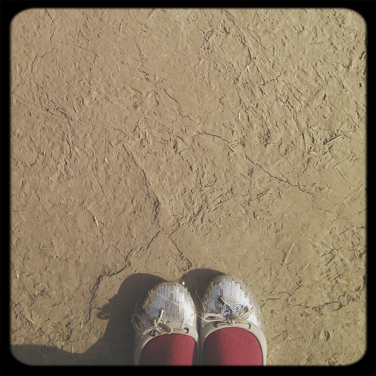 Shoes Socks Winterdairies Sun