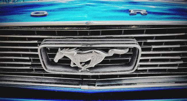 Mustang. Silver horse. Classic car. Badge.