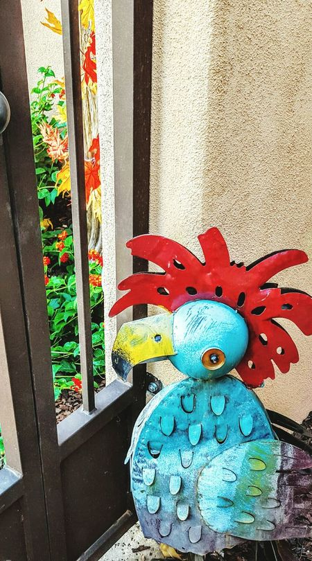 Home Sweet Home Roosterlove That's Me Guardsofthegate Arizona Mystyle Crazylady Nice Atmosphere Sharingmystory Fountainhills Hello World Eyeforliving Passionforlife