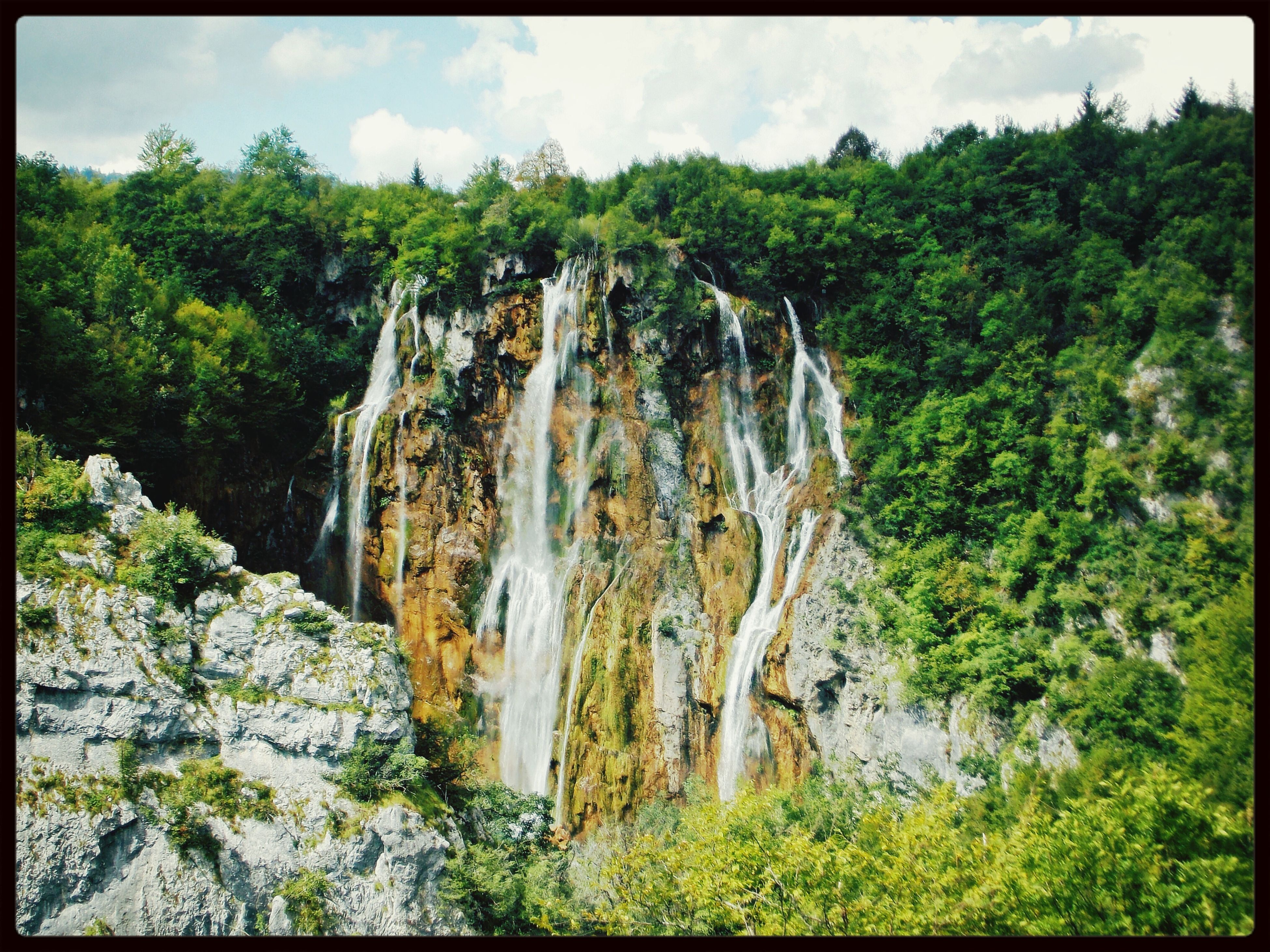 transfer print, tree, auto post production filter, tranquility, scenics, beauty in nature, tranquil scene, nature, sky, growth, forest, green color, idyllic, rock - object, low angle view, non-urban scene, rock formation, day, panoramic, outdoors