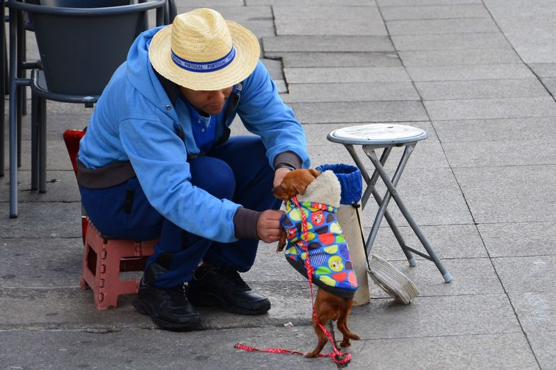 Scanaki Homeless Day Adults Only Only Men Dog Dog Clothes Human Condition City Life Dog Lover Togetherness D5100 Porto Travel Portugal Outside From My Point Of View Senior Adult Outdoor Care One Person One Animal Colorful Close-up Check This Out Rethink Things