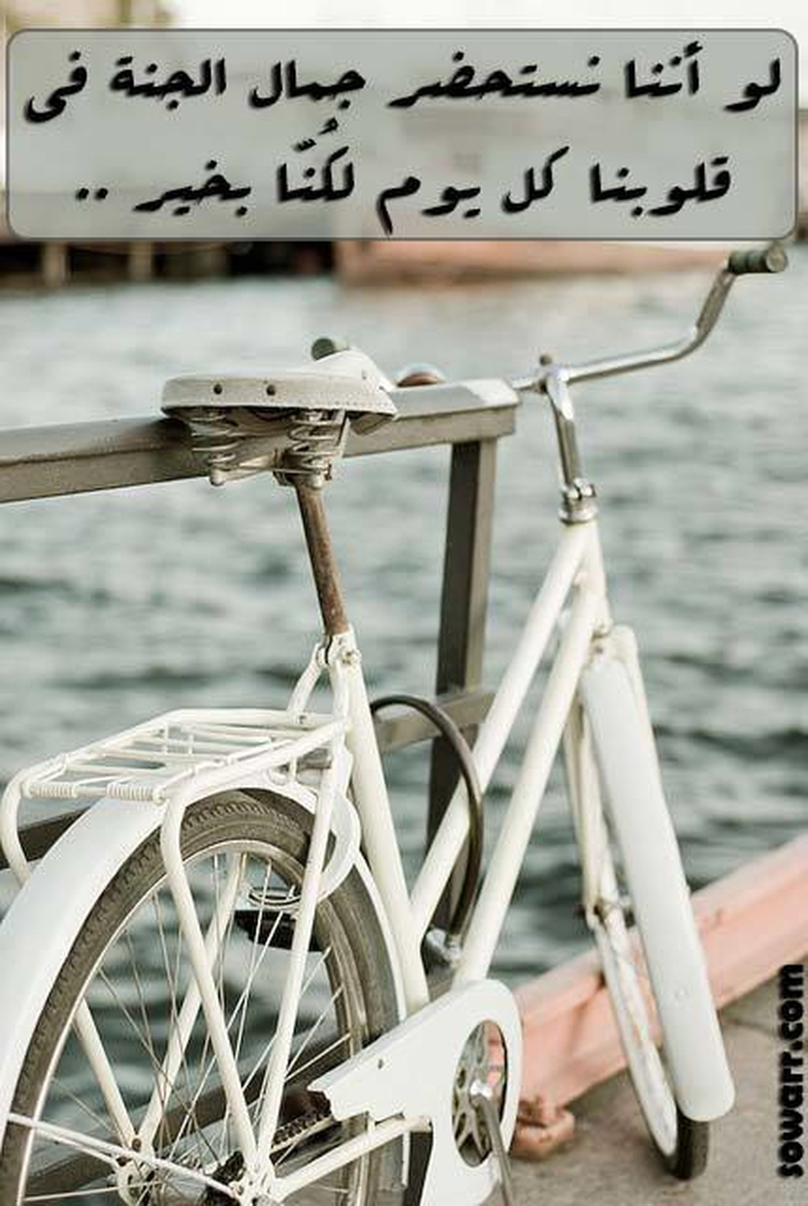 text, communication, western script, close-up, transportation, metal, mode of transport, focus on foreground, still life, no people, part of, bicycle, stationary, number, table, land vehicle, day, cropped, indoors, sign
