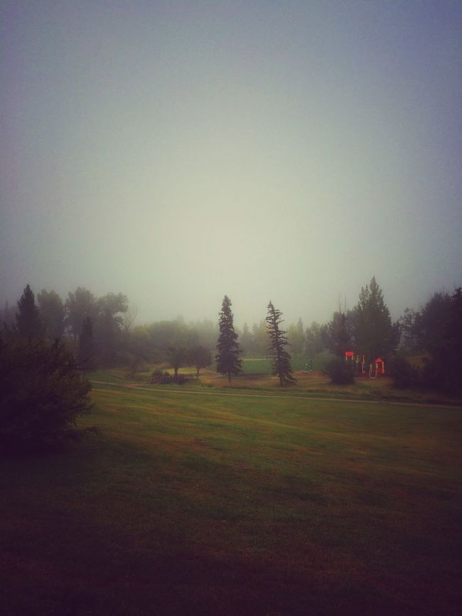 Fog in the shire. A Walk In The Park Walking Around Foggy Early Morning