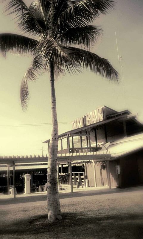 Tiki Bar, Key Largo, FL by dontget2close