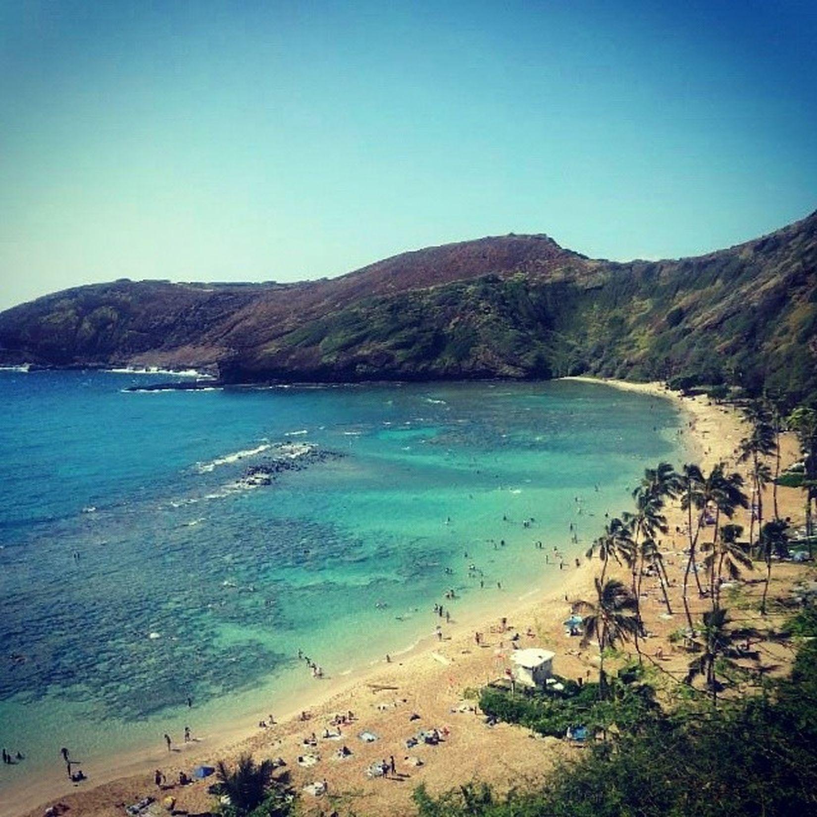 Papá 夏威夷