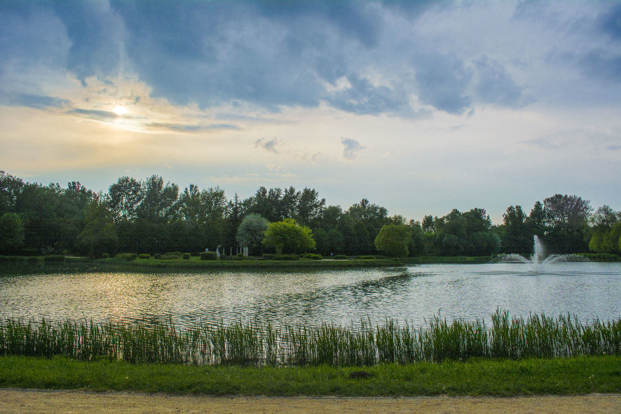 water, nature, lake, tree, scenics, beauty in nature, tranquility, tranquil scene, sky, idyllic, cloud - sky, outdoors, no people, growth, landscape, day, grass