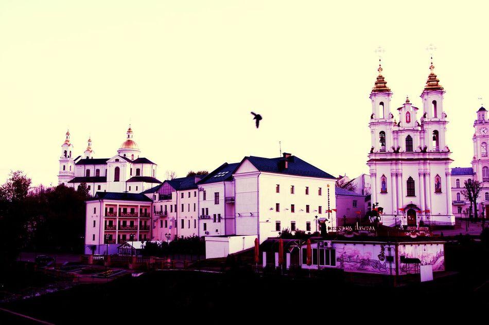 утро путешествия Витебск я Hi! рассвет Adapted To The City