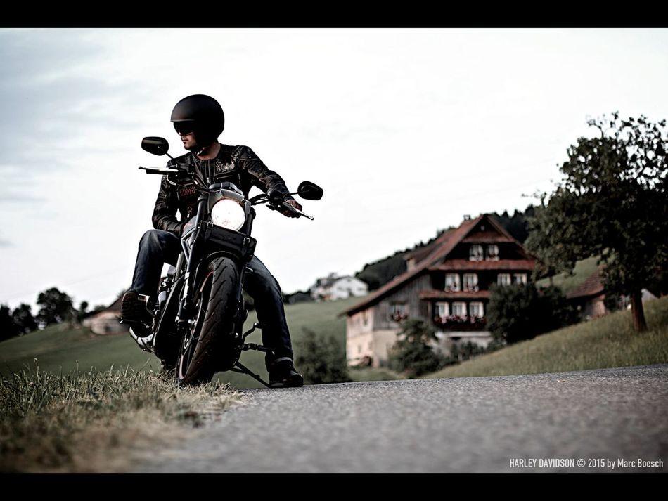 Harley Davidson Motorcycles Motorcycle Night Rod Special Harleydavidson Harley