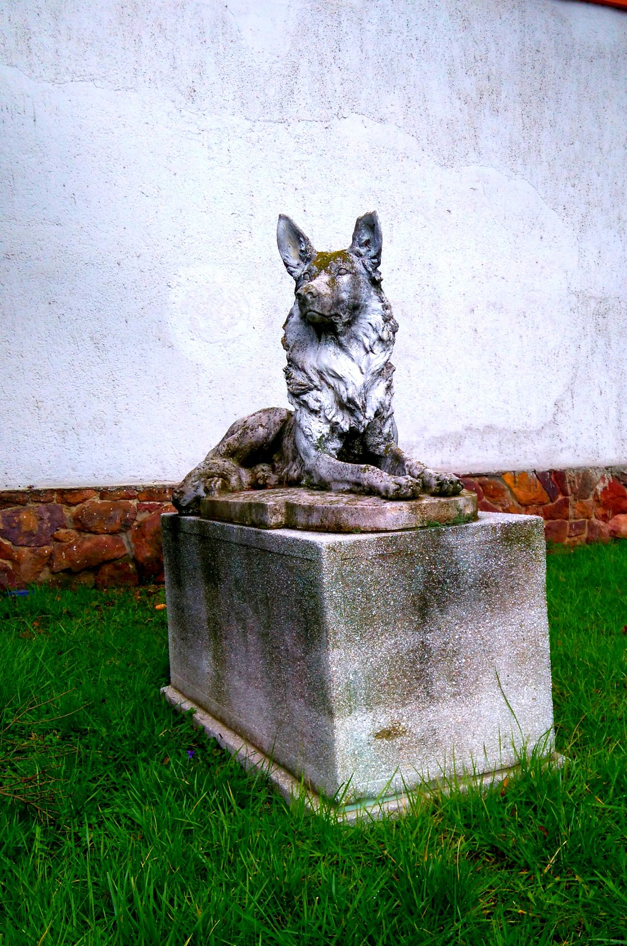 Made by Sony Xperia M4 Aqua Broken Cenotaph Dog German Shepherd Grass Old Portrait Sculpture Statue Szombathely Tomb Unknown