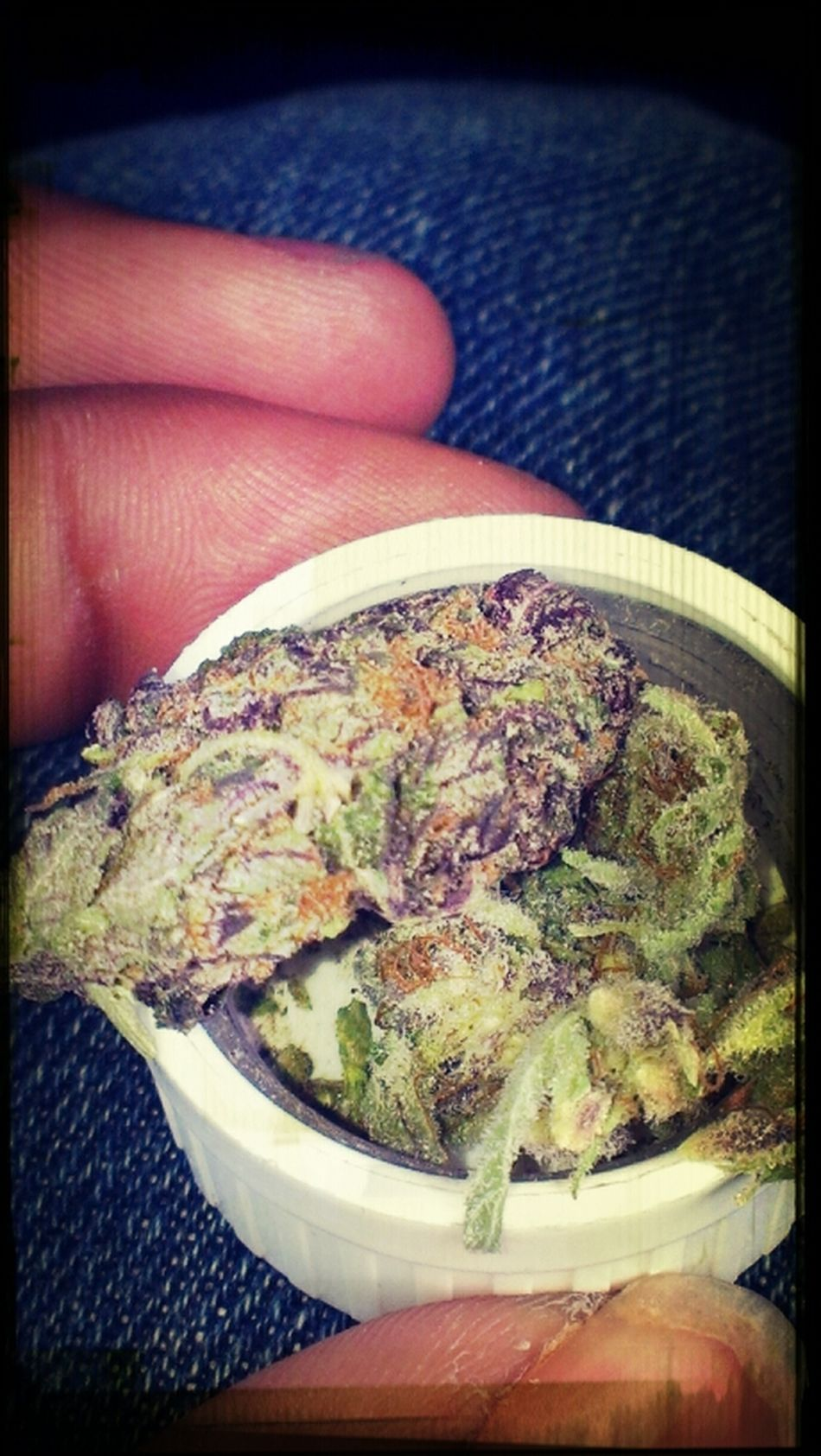 That Purple Only!!
