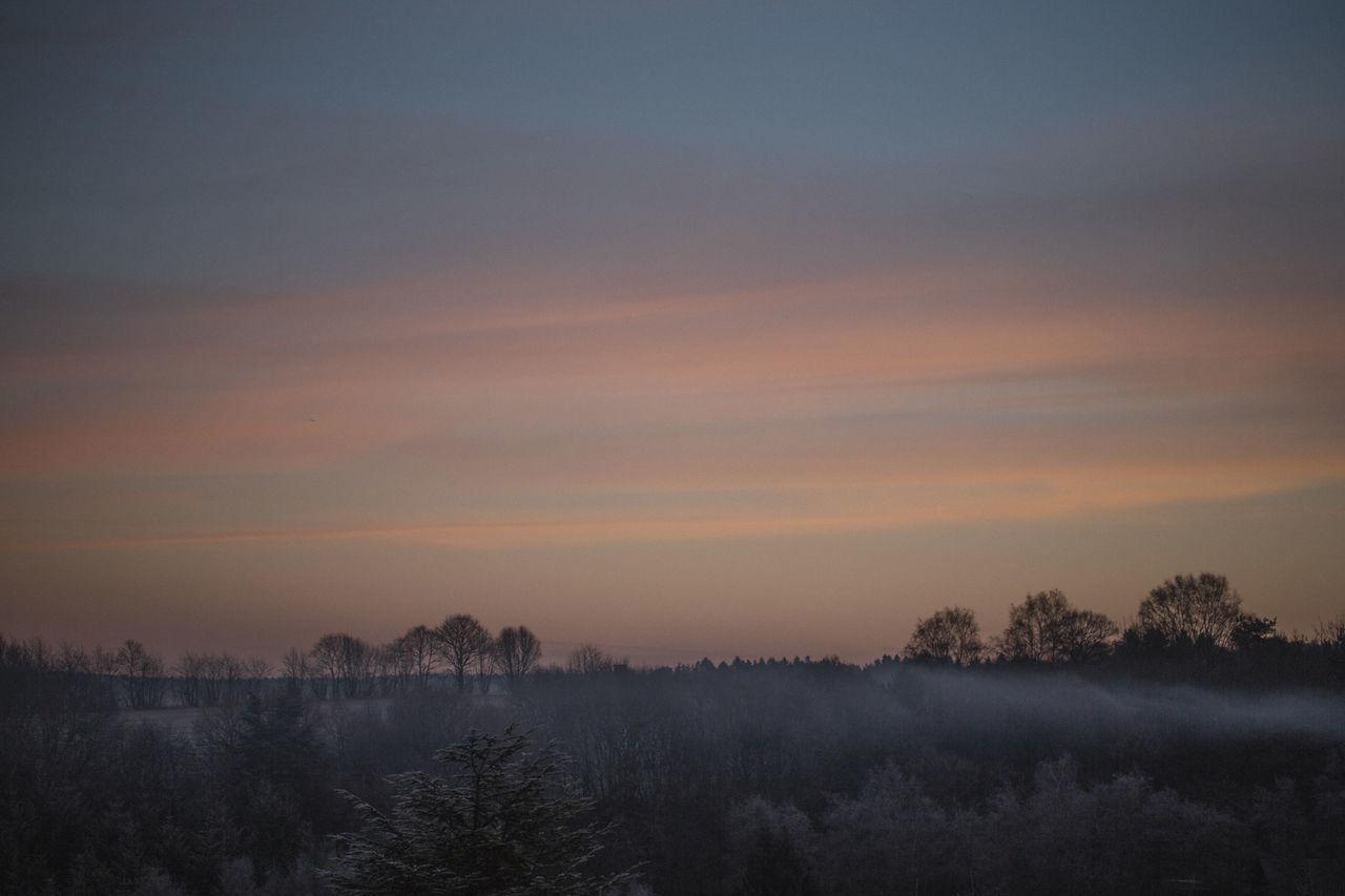 Autumn Beauty In Nature Eifel Fog Foggy Morning Germany Hoarfrost Morning Light Morning Sky Morning Sun Sky Sunrise Tranquil Scene Tranquility White Frost