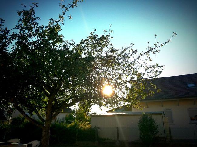 Landscape Landscape_photography Sunset Sun Photography Photographer Photograph
