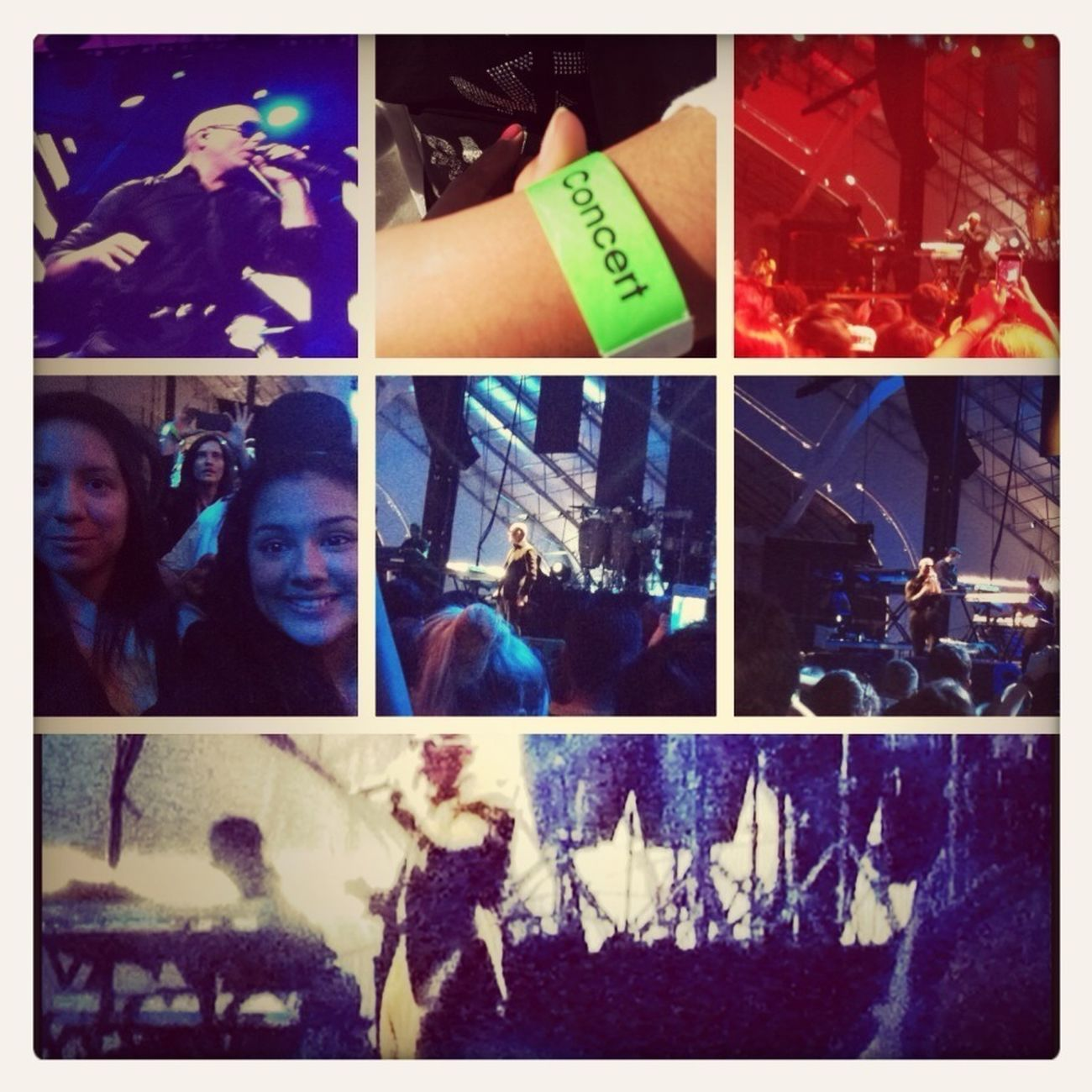 Pitbulls Concert