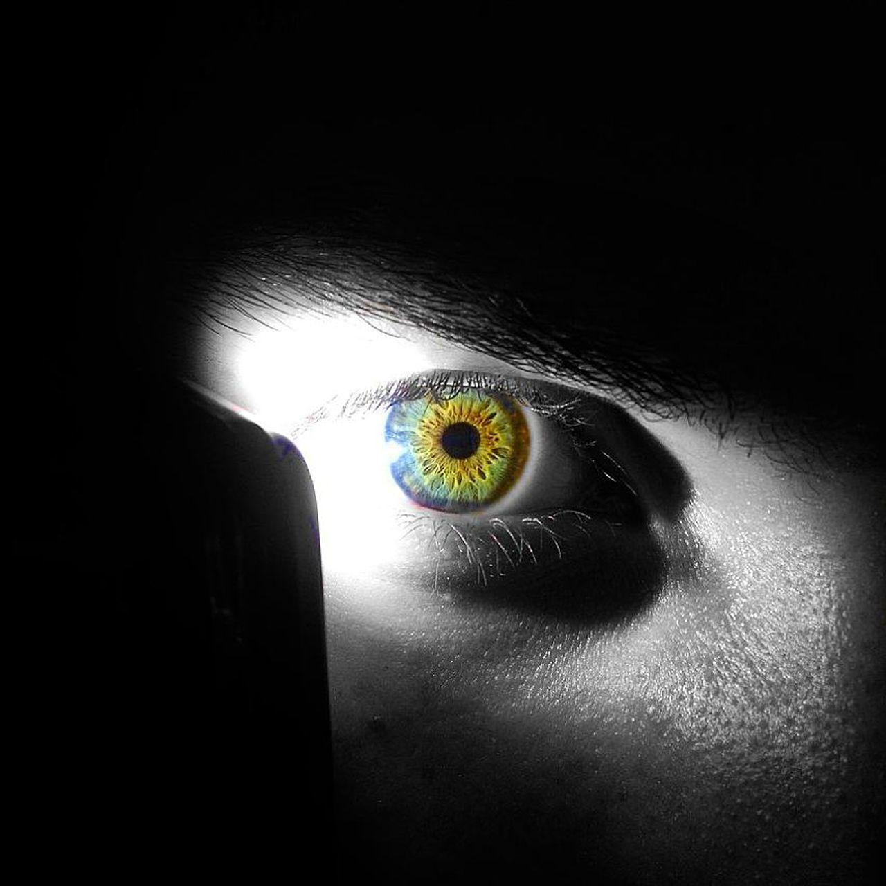 Eye Eyes Boy Man Stare Beautiful Eyes Macro Photography Macro Beauty Unique Eye Color Black Background