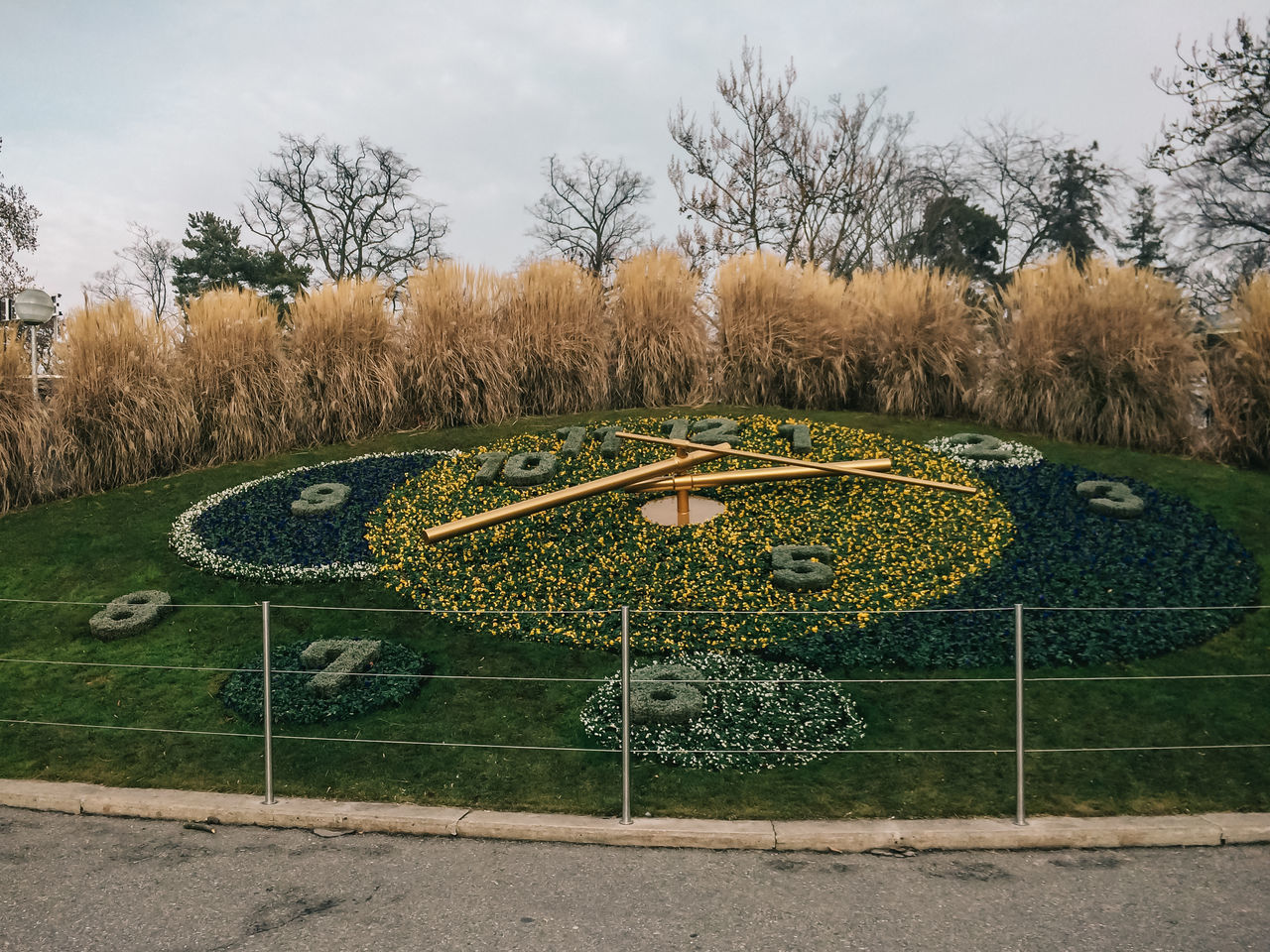 Flower clock in Geneva Clock Day Flower Flower Clock Geneva Grass Green Color Nature No People Outdoors Sky Tree