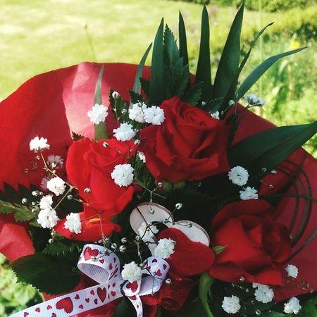 Red Rose Flower Red Day Flower Head RedFlowers😍 Nature Freshness Mutterliebe Mutternatur