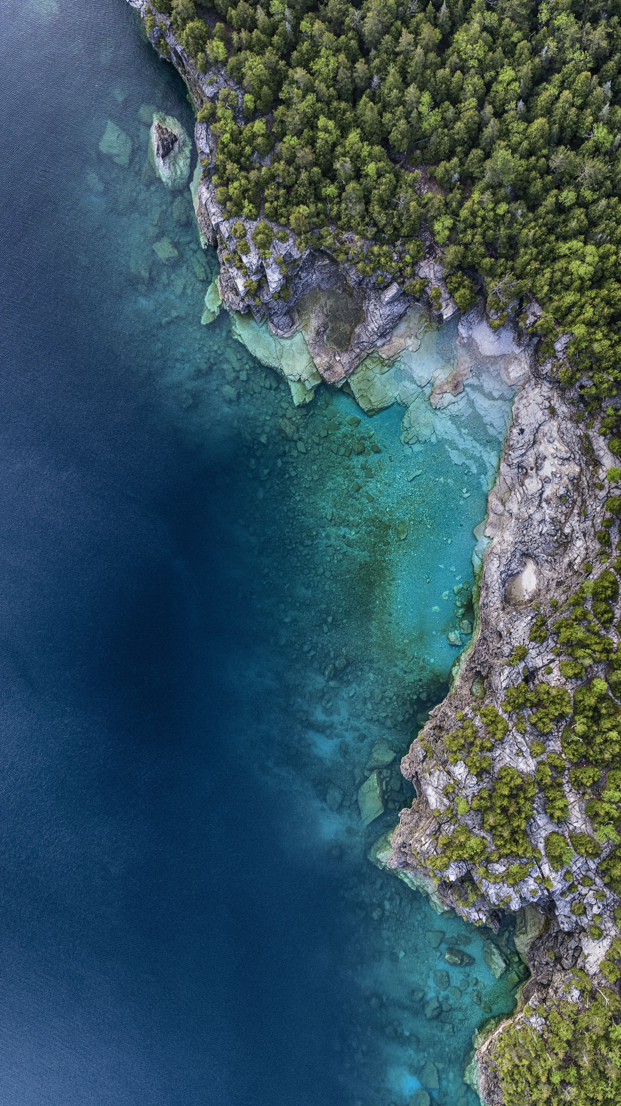 Water High Angle View Beauty In Nature Tree Exhilaration Summer Outdoors Sun Nature Flying Aerial Drone  Landscape Water_collection Water Beach Grotto Grotte Huron Shoreline Great Lakes Wilderness Clear Forest The Great Outdoors - 2017 EyeEm Awards
