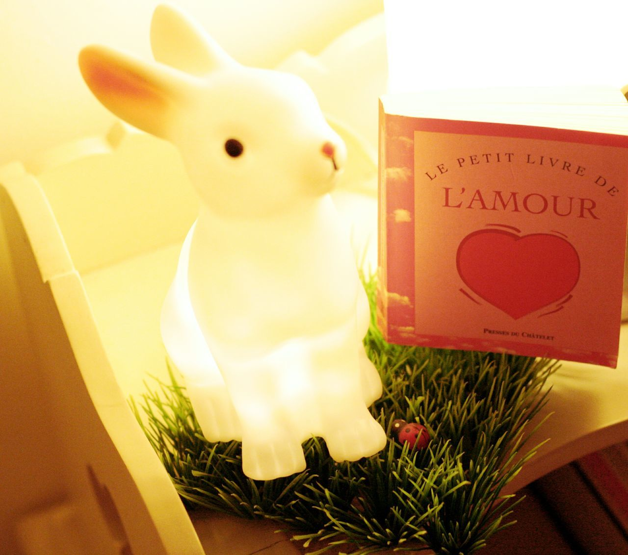 Rabbit ❤️ Bedroomlight