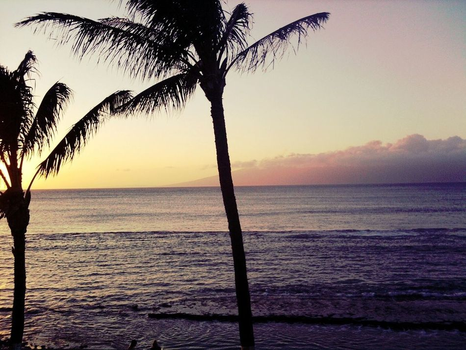 I Miss Hawaii!