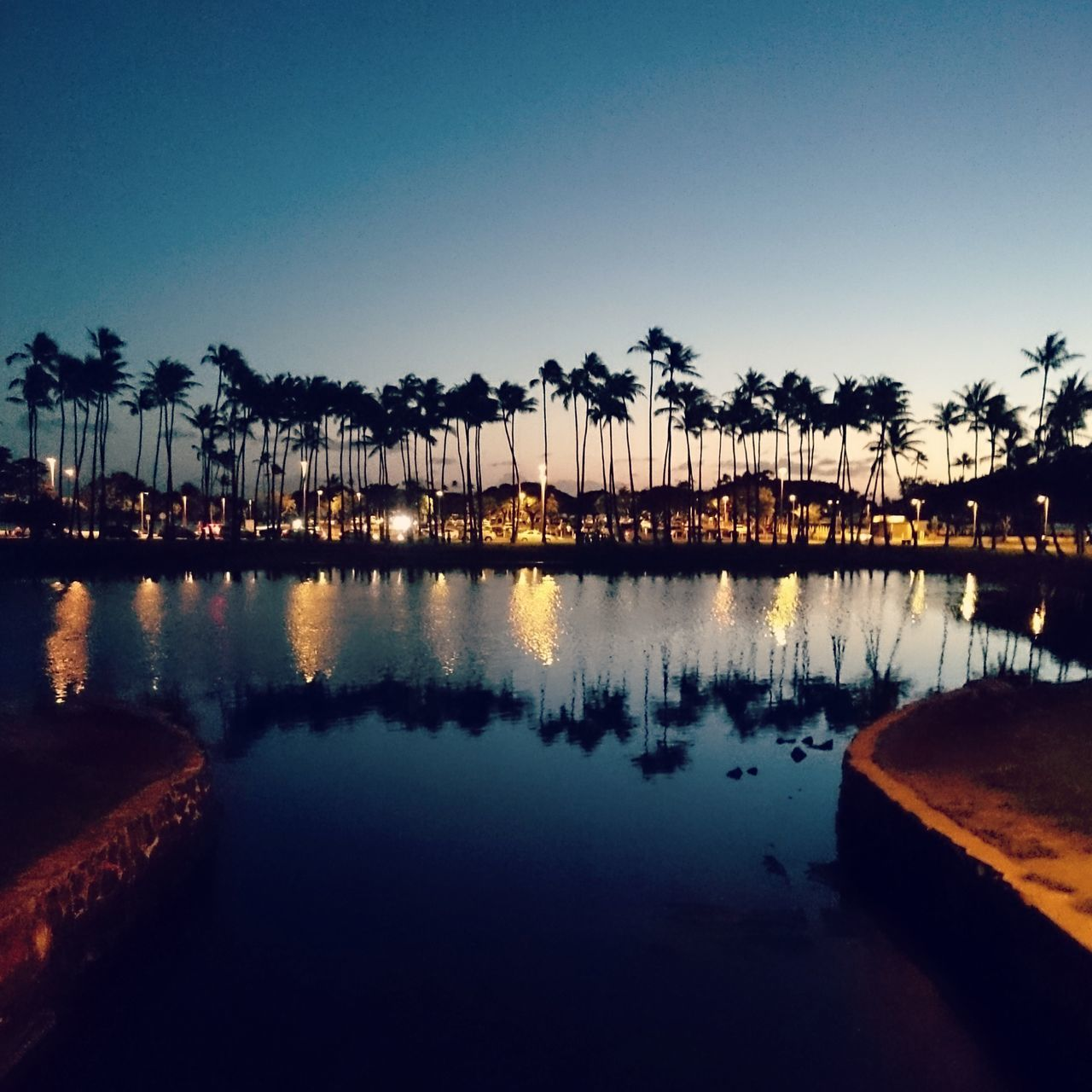 Honolulu  Hawaii Paradise Palm Reflection Water Sunset Sky Silhouette Vacations Nature Night Scenics Palmtree Palm Tree Silhouette Island Island Holiday Island Resort EyeEmNewHere