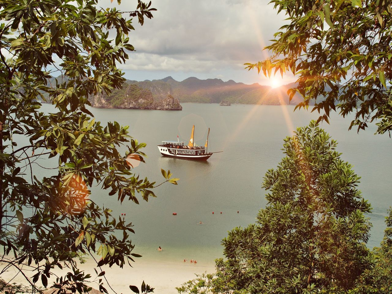 tree, water, nautical vessel, nature, scenics, outdoors, mode of transport, beauty in nature, transportation, sky, day, no people, leaf, growth, mountain, sunset