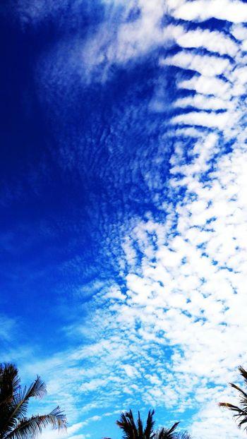 From the Blue Sky Series. Da Série Céu Azul. Blue Sky BeachCloud - Sky Morro Branco Ceará Brazil Clouds Summer Ceará Brasil ♥