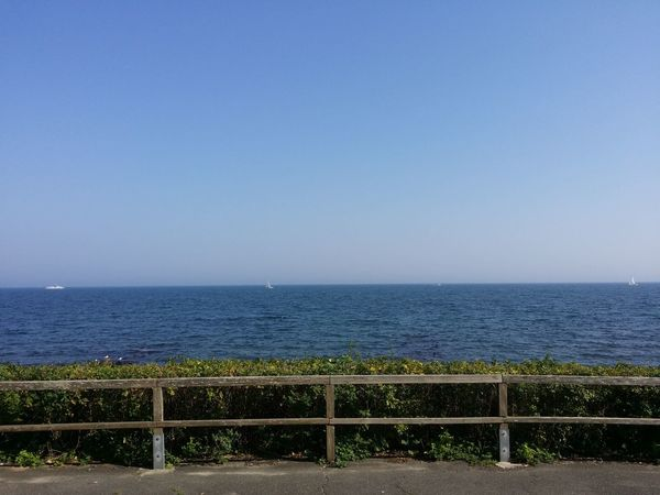 Sea Horizon Over Water Water Fence Railing Blue Copy Space Scenics Tranquil Scene Clear Sky Tranquility Beach Travel Destinations Beauty In Nature Seascape Tourism Boundary Day Nature Non-urban Scene