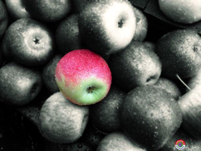 Apple Fruit Fruits Apple - Fruit Raindrops Colorsplash Coloursplash Coloursplash_masters Coloursplash_king EyeEm Bangladesh Natural Beauty Natural Bangladesh EyeEm Best Shots - Nature Beautiful Nature EyeEm Nature Lover EyeEm Best Shots EyeEm Best Edits