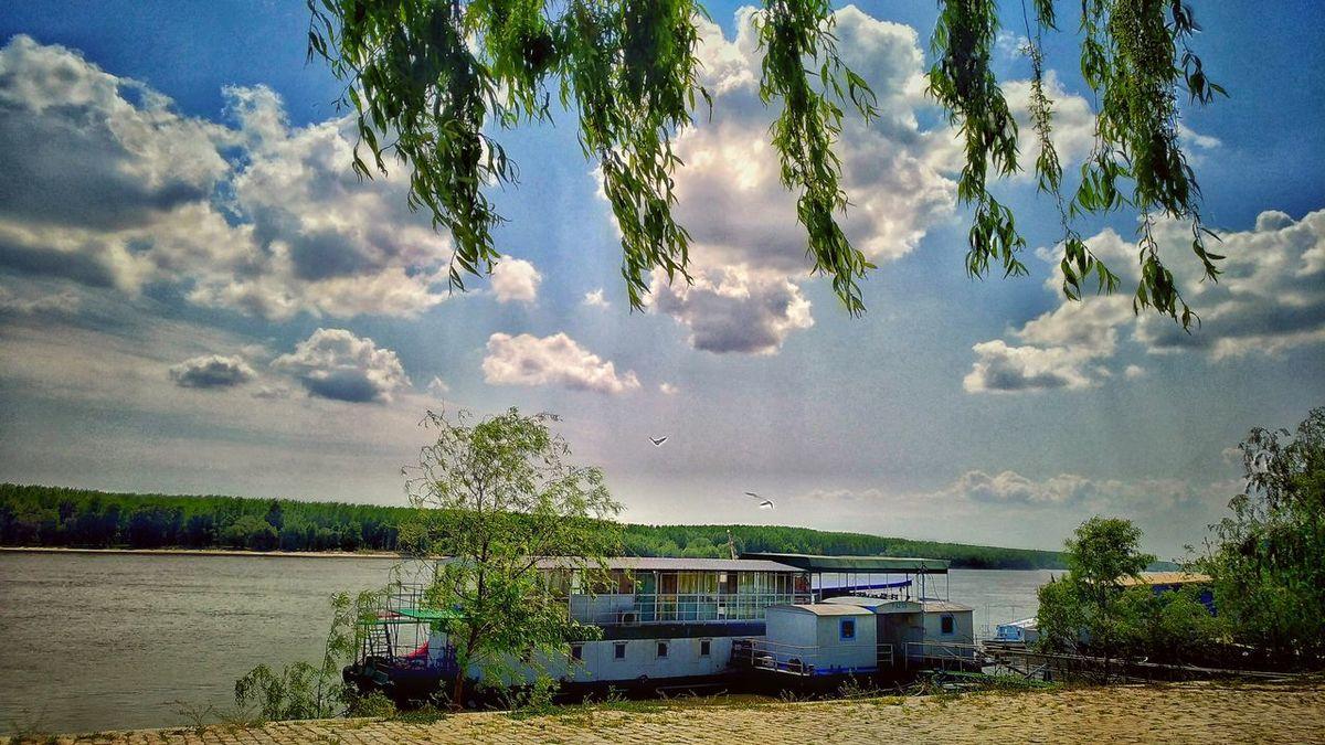 Tree Cloud - Sky Sky Nature Outdoors Water Day Transportation Beauty In Nature Growth No People Nautical Vessel Danube Dunarea Braila Danube România
