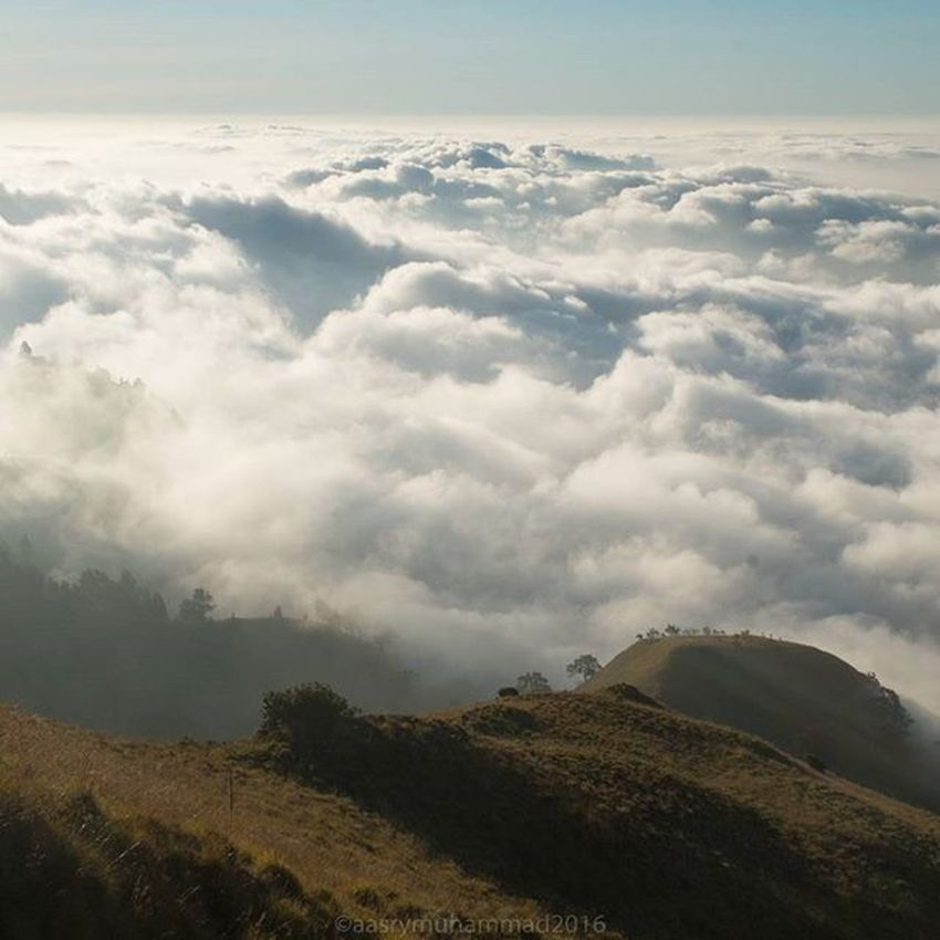 Breathtaking scenery from Mount Rinjani #hiking #landscape #rinjani #sunset #sun #clouds #skylovers #sky #nature #beautifulinnature #naturalbeauty #photography #landscape Beauty In Nature Landscape Mountain Nature Outdoors Scenics Sky Tranquility First Eyeem Photo