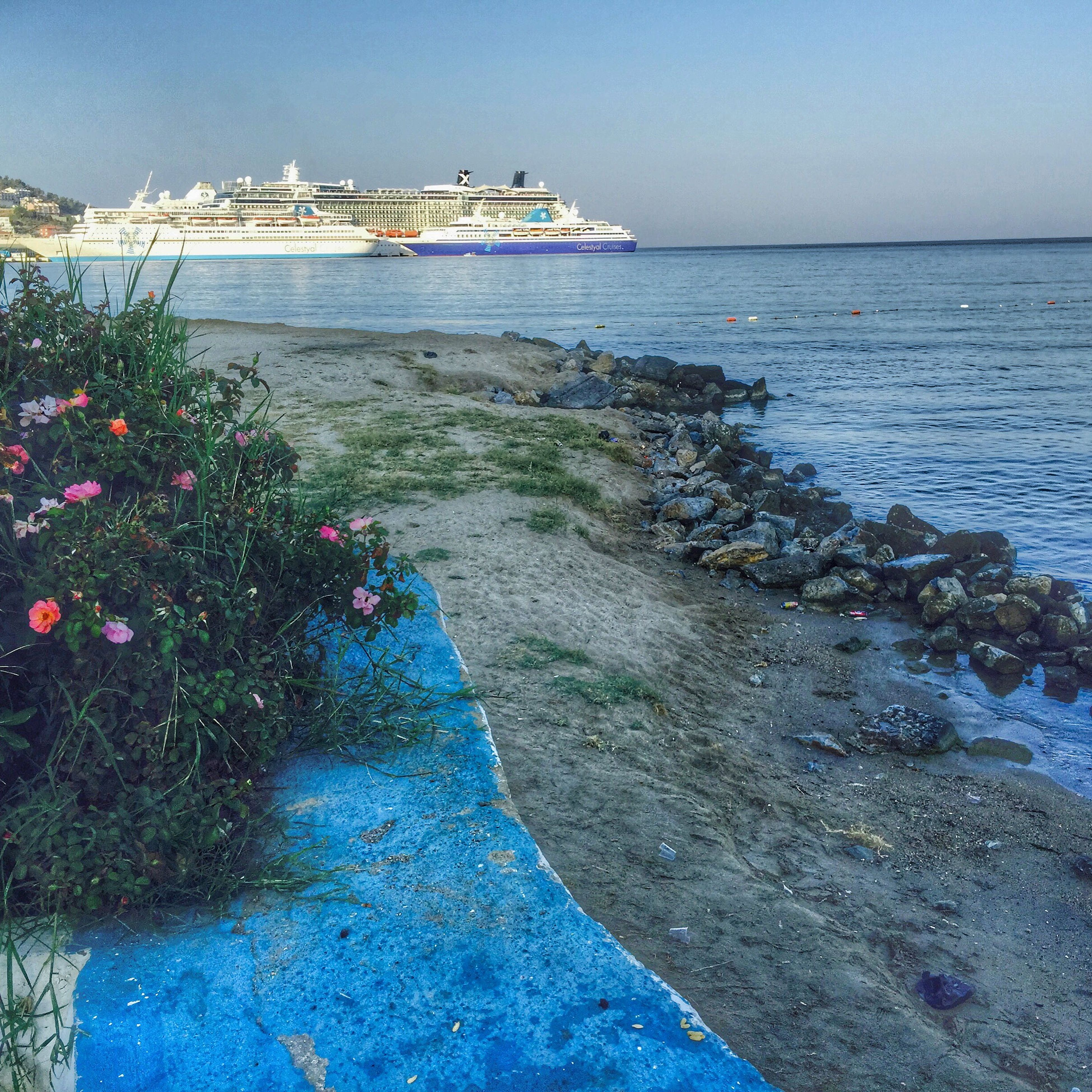sea, water, blue, horizon over water, tranquility, tranquil scene, nature, beauty in nature, scenics, plant, clear sky, growth, sky, beach, sunlight, tree, shore, idyllic, day, outdoors