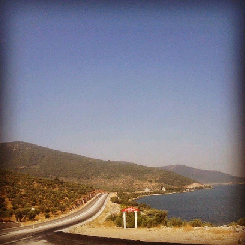 Bafa Gölü...