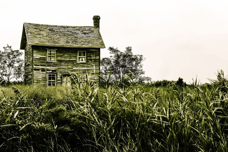 Hooper's Island house decaying. Old House Abandoned Places Abandoned Tall Grasses Building Exterior Built Structure Architecture Nature Countryside Rural Scene No People JGLowe Beauty In Nature