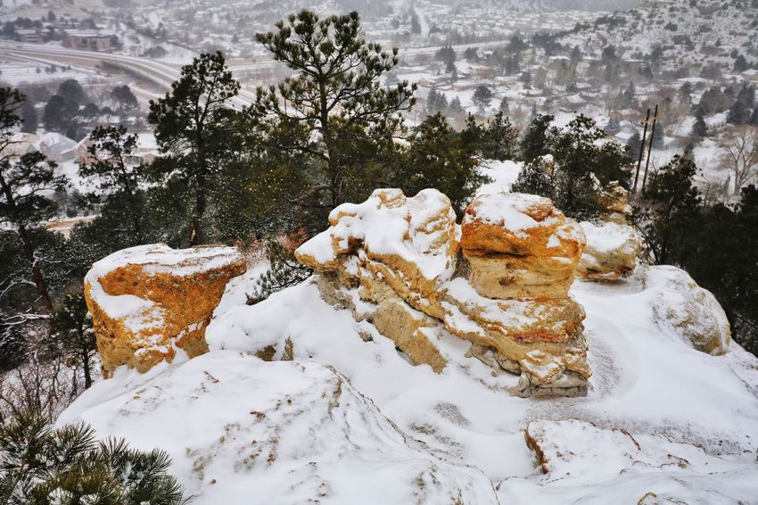 """A snow day literally and figuratively falls from the sky, unbidden, and seems like a thing of wonder."" Snow Winter Cold Temperature Nature Tree Beauty In Nature Frozen Snowing Landscape Outdoors Colorado Springs Colorado Coloradophotographer Ladyphotographerofthemonth Photography Photooftheday"